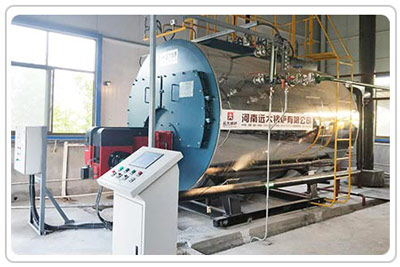 2ton gas steam boiler